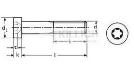 šroub M6x60 A2 NEREZ válcová hlava TORX DIN 912 TX - ISO 14579