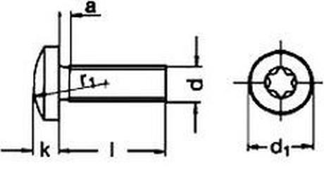 šroub M6x20 A2 NEREZ půlkulatá hlava TORX DIN 7985 TX ISO 14583