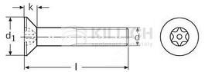 roub m6x16 zinek 8 8 z pustn hlava torx din 7991 iso 14581 rouby. Black Bedroom Furniture Sets. Home Design Ideas
